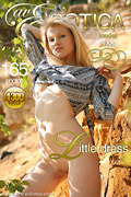 avErotica gallery - Little dress - 165 photos - Nikki