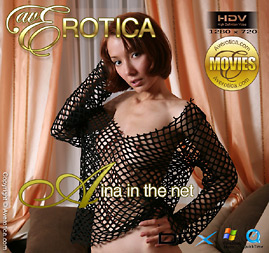 avErotica movie - Aina In The Net - Aina